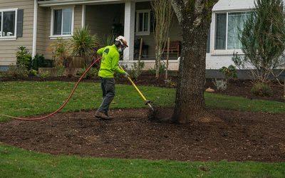 General Tree Service Acquires True Care Inc