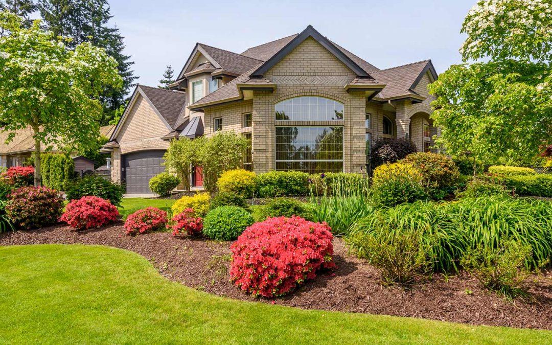 General tree Garden & Landscape Solutions