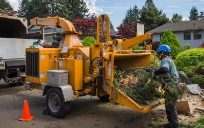 Why General Tree Service Is A Great Place To Work In Portland Oregon