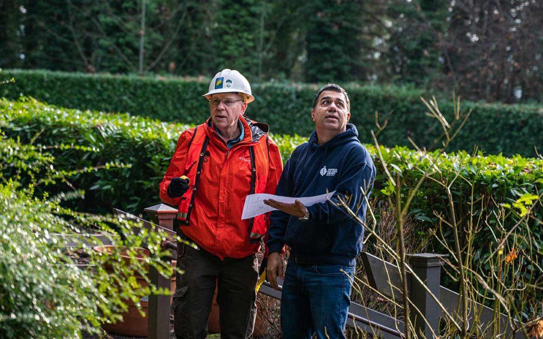 General tree Management Team Sets