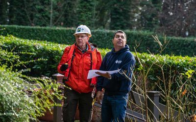 Management Team Sets The Tone For General Tree Service