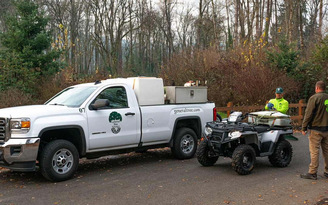 General Tree Service Customers of Landscape